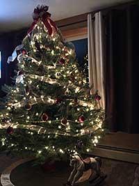 Christmas Trees For Sale At Balsam Ridge Christmas Tree Farm